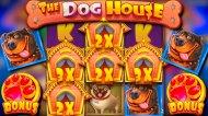 У слота The Dog House Megaways самый привлекательный дизайн